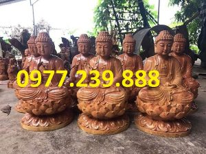 phat ong thich ca go huong gia re