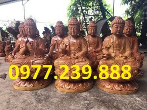 phat ong tuong thich ca go huong nam phi