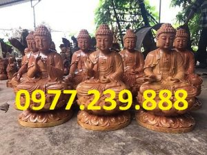 phat ong tuong thich ca go huong nhap