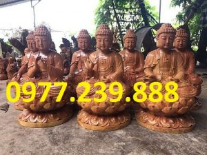 phat ong tuong thich ca go huong ta