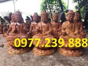 phat ong tuong thich ca go huong viet