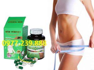 thuốc hỗ trợ giảm cân new perfect 60v